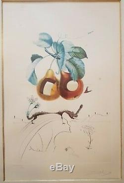 Salvador Dali Gravure Etching Flordali 1969 Fruits Troues 84/150